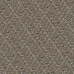 Figure 2: cat_006